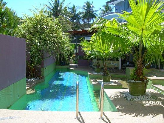 Peninsula Boutique Hotel: Pool