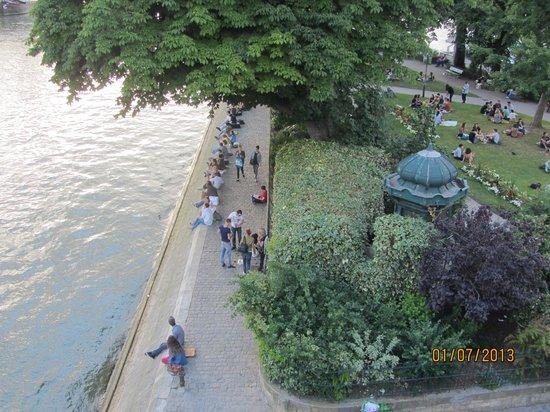 Río Sena: Вид с моста на остров Сите