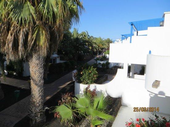 HL Paradise Island: vistas desde la habitacion