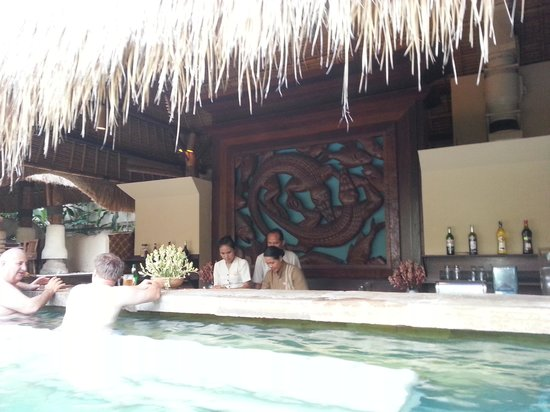 Novotel Bali Benoa: crocokiss swim up bar