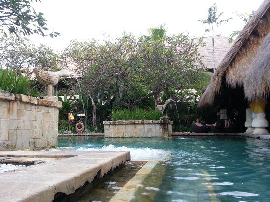Novotel Bali Benoa: crocokiss pool