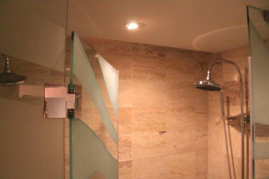 Paradisus Punta Cana Resort: в ванной комнате нет биде, зато есть ДВА душа:))) зачем?