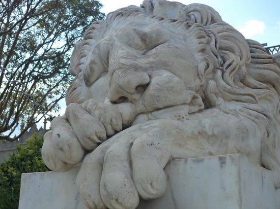 Alupka: спящий лев