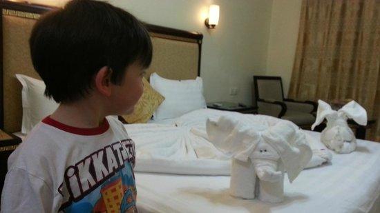 Cedar Hotel : odadan bir görünüm