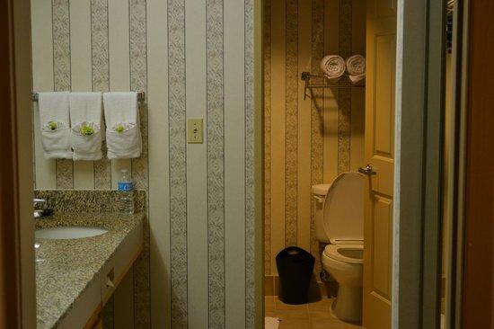 Sheraton Suites Houston Near The Galleria: Bathroom
