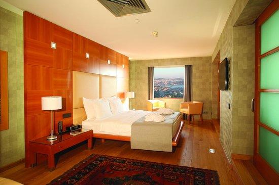 Mercure Istanbul City Bosphorus Hotel : Presidential Suit