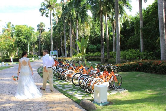 Paradisus Punta Cana Resort: 8