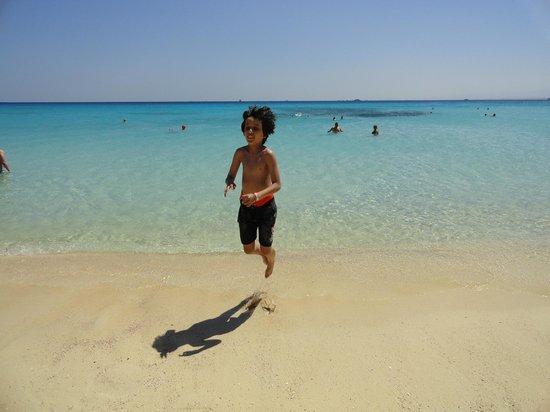 Mahmya Island : Clean water and sand.
