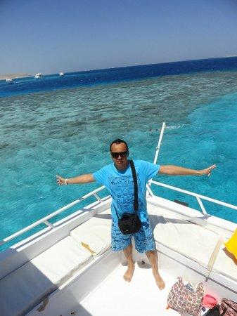 Careless Reef : Unbelievable.