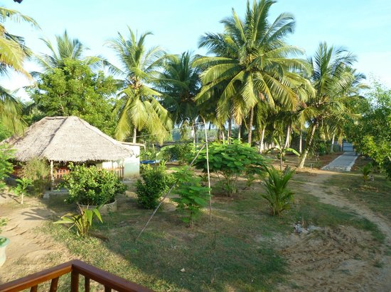 Coconut Island Cabanas and Restaurant: Blick vom Bungalow