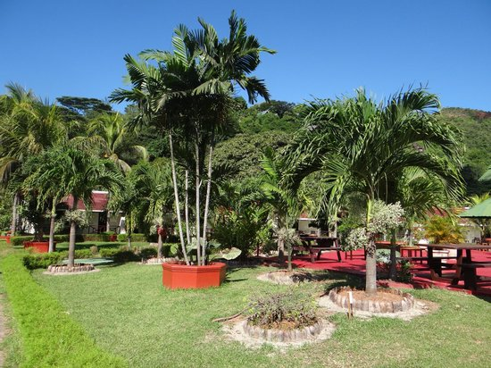 Berjaya Praslin Resort - Seychelles: jardin