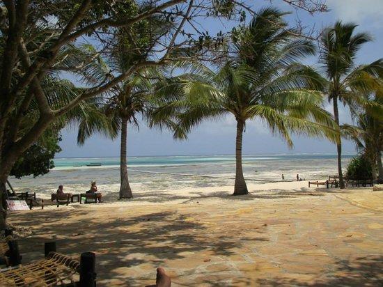 Karafuu Beach Resort and Spa: Zona piscina
