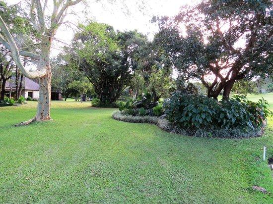 Sabi River Sun Resort : Outdoors