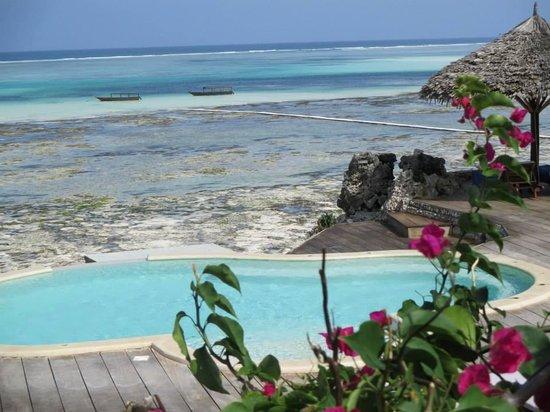 Karafuu Beach Resort and Spa: Vista spa