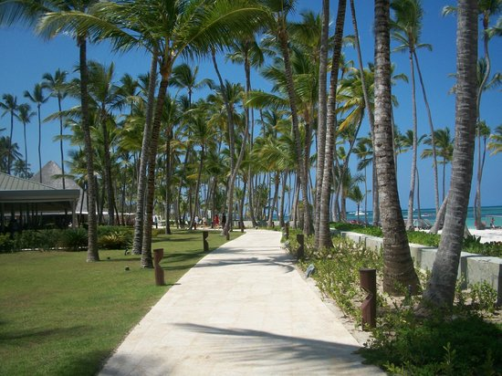 Barcelo Bavaro Beach - Adults Only: Sur le complexe du barcelo deluxe