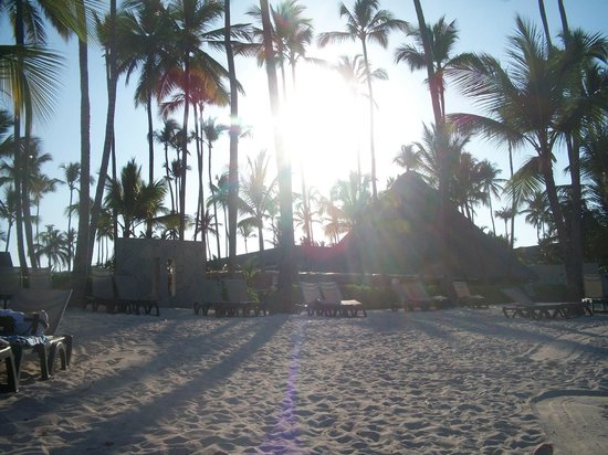 Barcelo Bavaro Beach - Adults Only : Plage