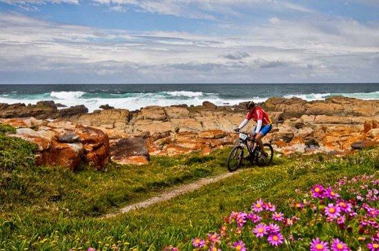 Cape St Francis Resort : Many walks and hikes