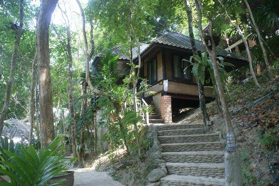 MOONLIGHT Exotic Bay Resort : Hill View Room