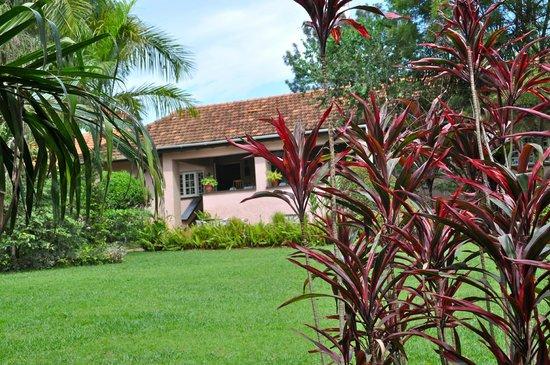 The Boma: more gardens
