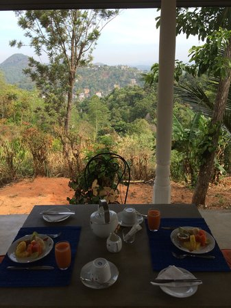 Villa Shenandoah: Breakfast on the terrace