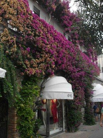 I Faraglioni: Particolare di un negozio con questa parete ricoperta di fiori