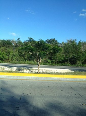 Now Sapphire Riviera Cancun: View while driving along highway in Cancun