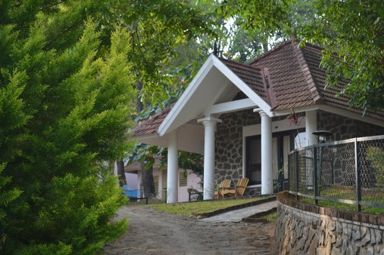 Hotel Treetop: Our Cottage