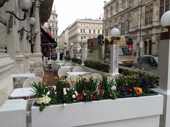 Hotel Sacher Wien: Outdoor