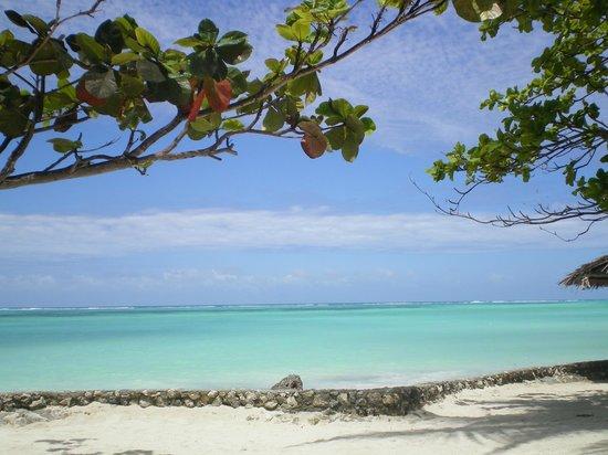 Diamonds Mapenzi Beach Club: spiaggia hotel mapenzi