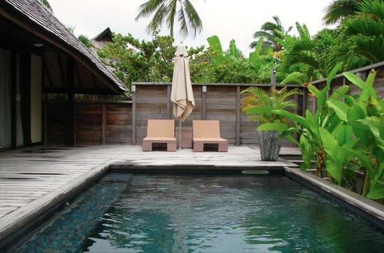 Plunge pool in the garden villa