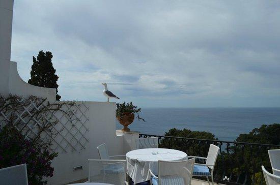 La Scalinatella : Vista do hotel