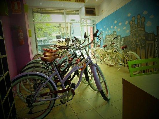 Luggage Point & Rent a Bike: Tienda 3