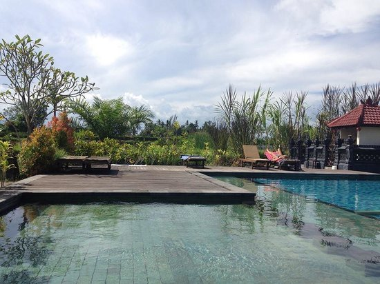 Suly Resort and Spa: Pool side view