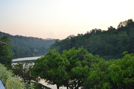 Cinnamon Citadel Kandy: The river and jungle you overlook while hanging out at the pool and lobby bar.