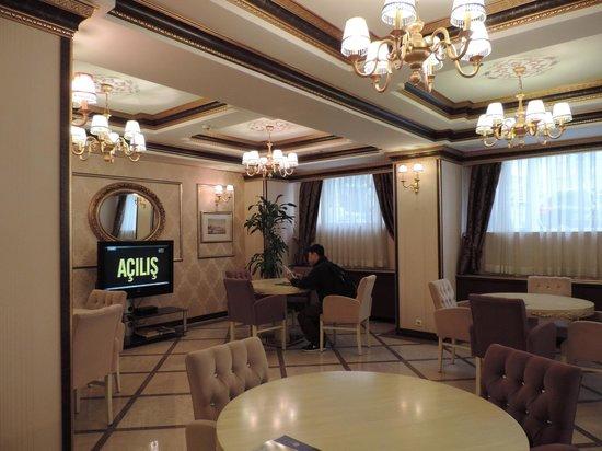 Albatros Premier Hotel: the lobby