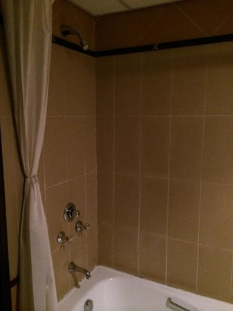 Hotel Alvalade : Shower
