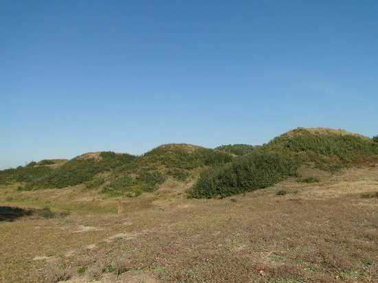 Fort Fisher State Historic Site : the earthen fort