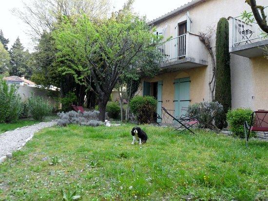 Hotel l'Amandiere : jardin
