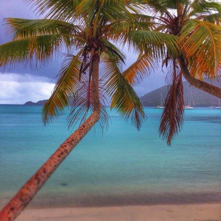 Maho Bay: Paradise