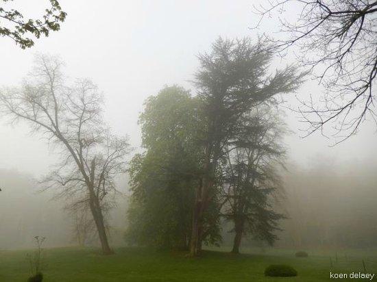 Le Château de Beaulieu : park