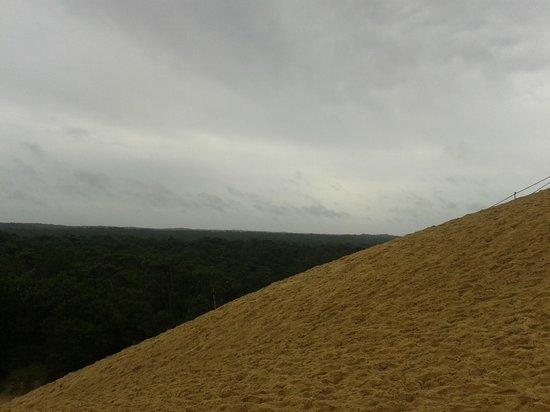 Dune du Pilat : côté terre