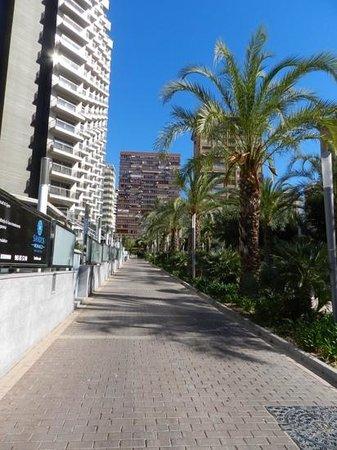 Sandos Monaco Beach Hotel & Spa: approaching hotel along the tree lined path