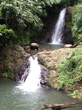 Grenadian by Rex Resorts: Seven Sisters Waterfall