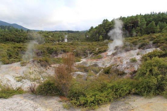 Wai-O-Tapu Thermal Wonderland : Lots of sulfur!