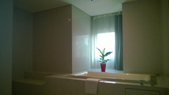 Maduzi Hotel : bathtub