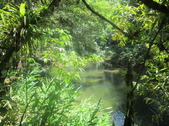 Topes de Collantes: Fresh-water river.