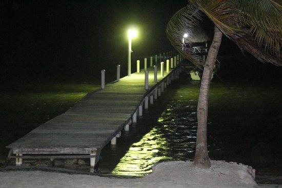 Pelican Reef Villas Resort: Dock at night.  Tarpon swimming all over.