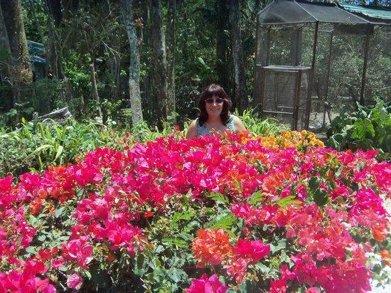 El Nispero Zoo and Botanical Garden: un rincon muy colorido