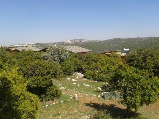 Ajloun Nature Reserve