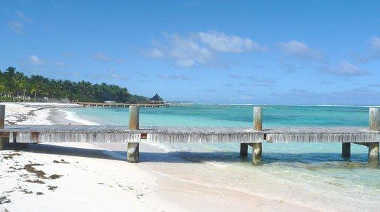Club Med Punta Cana : les voisins ..!!